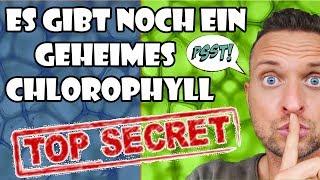 Was dir niemand sagt:Es gibt noch ein geheimes Chlorophyll