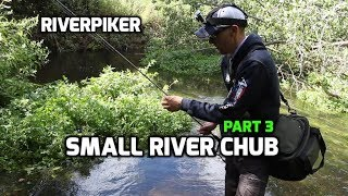 Small river chub (3 of 4) - (video 208)
