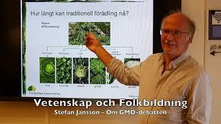 Stefan Jansson – Om GMO debatten