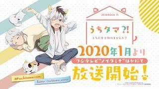 TVアニメ「うちタマ⁈ ~うちのタマ知りませんか?~」第1弾PV