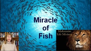 """""""Miracle of Fish"""" Ps. Stella Roco - Mahanaim Life Ministry"""