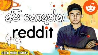 Reddit sinhala -  Understanding how reddit works 😉 sinhala [Social Media Review]