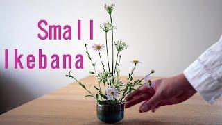 【生け花】初心者向け!小さなお花【ikebana】お猪口small