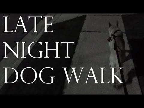 Binaural Late Night Dog Walking - (Ambient Sounds/No Talking/3D Sounds/Good Boy)