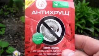 Защита саженцев от вредителей видео