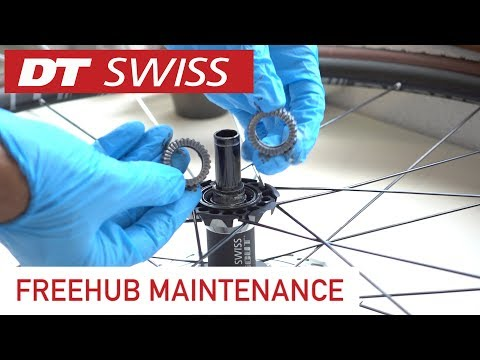 DT Swiss hub maintenance How-To Tutorial. Clean and grease!