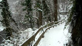 preview picture of video 'Snow covered Hiking Trail in the Eifel'