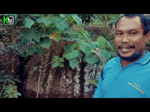 INILAH Goa Angker Ditemukannya Mustika Ular oleh Mbah Turkani