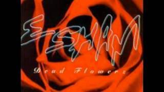 If I Can't Have You - Esham