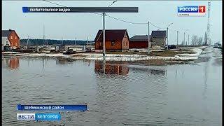 ГТРК Белгород - Белгородцы самостоятельно пытаются справиться с талыми водами
