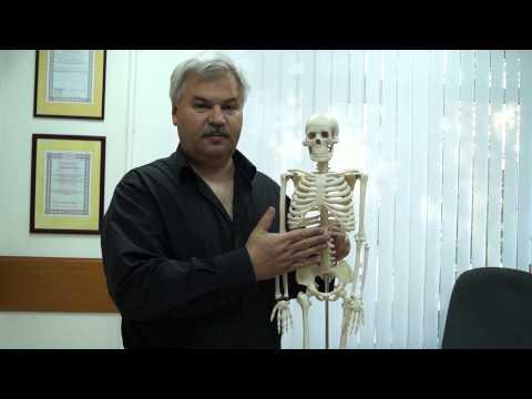Первая медицинская помощь при повреждениях суставов костей