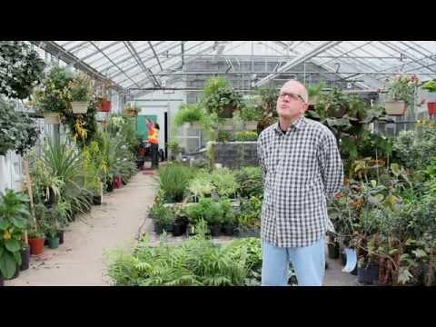 Landscape Horticulture - YouTube