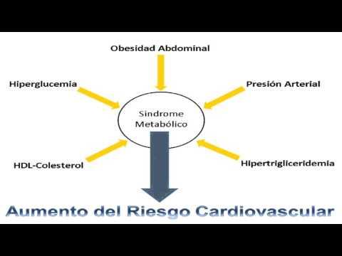 El tratamiento de la previsión de la hipertensión