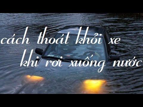 Cách thoát khỏi xe khi bị lũ cuốn trôi - cực kì hữu ích mùa bão lụt