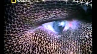 DNA Mysteries The Search for Adam National Geographic Documentary
