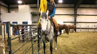 *Sold* Bubba - 7 Year Old Grey Ranch & Trail Gelding