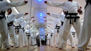 Taekwondo: Kwon, Jae-Hwa zum letzten Mal in Deutschland