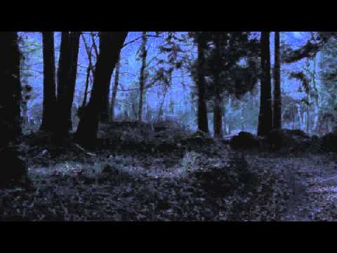 In Fear (Clip 'What Would You do to Save Your Soul?')