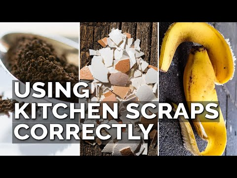 Most People Don't Use Food Scraps in the Garden Correctly