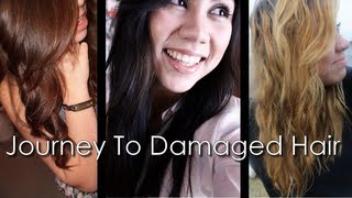 My Journey To Damaged Hair