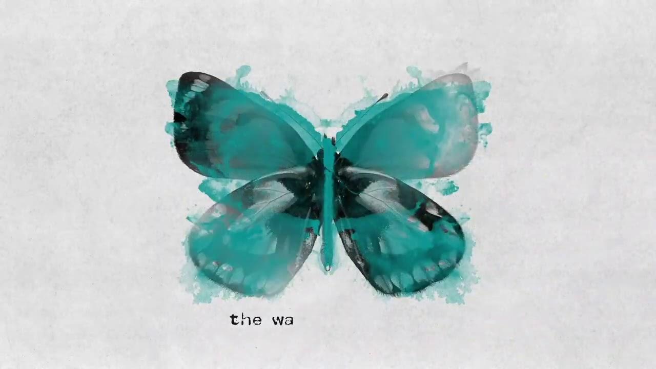 Lirik Lagu Butterflies - James TW dan Terjemahan