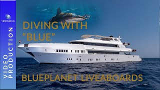 "Scuba diving in the Red Sea with Blueplanet Liveaboards   ""Blue"""