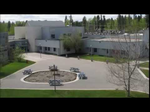 Aurora's Engineering College video cover1