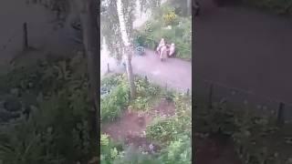 Голый мужчина гуляет о дворе в Чебоксарах 17 июля