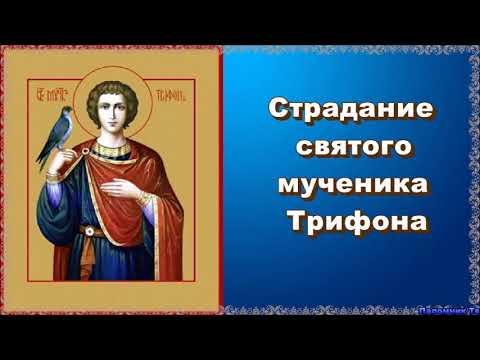 Страдание святого мученика Трифона