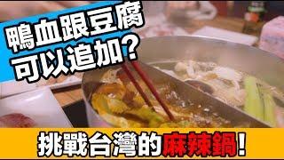 愛上台灣麻辣鍋了!大馬朋友品嚐「滿堂紅」...原來鴨血跟豆腐也是吃到飽!