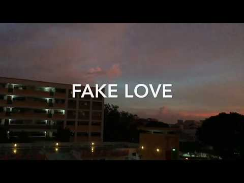 Download Acoustic English Cover Bts Fake Love Elise Silv3rt3ar Video