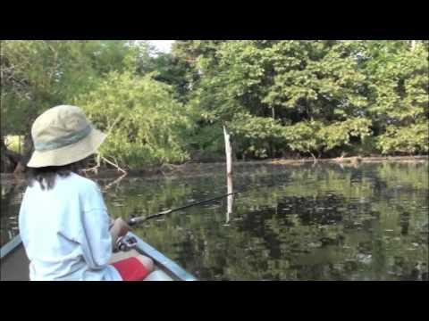 Delaware pond fishing 2011