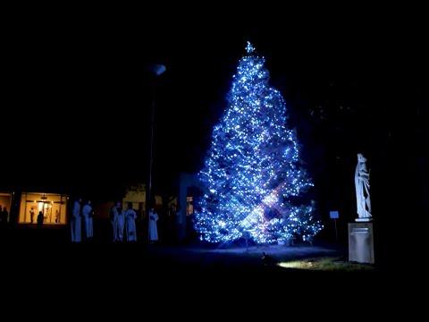 【清心のクリスマス】灯火に祈りをあつめよう スペシャルムービー