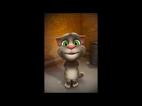 Talking tom cat giving reply to Lahore & Karachi Boys/Girls