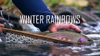 Fly Fishing for Winter Rainbows