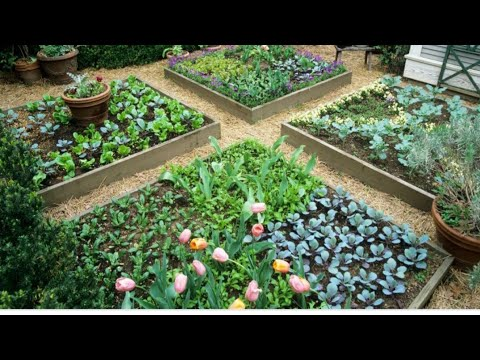 The wrong thing! Awesome gardening!