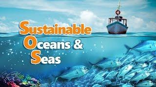 Sustainable Oceans & Seas - Full Video