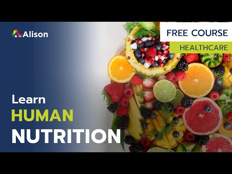 Diploma in Human Nutrition- Free Online Course with Certificate ...