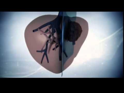 Влияет ли гепатит в на плод