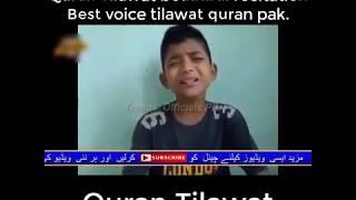 Quran Tilawat beautiful recitation Best voice tilawat quran