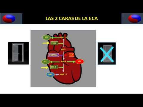 ¿Cómo funciona la presión del aire en el hipertensiva y hipotensor