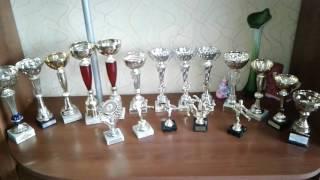 Обзор моих трофеев. (Кубки по каратэ.)