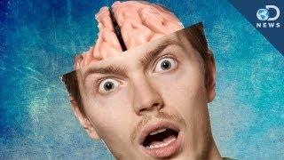 How A Tiny Amoeba Can Eat Your Brain