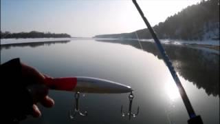 Бийск отчеты о рыбалке 2019