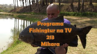 Programa Fishingtur na Tv 213 - Grandes peixes no Pesqueiro Mihara