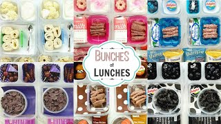 Colorful School Lunch Ideas for KIDS+What They Ate | K, 1st grade, 2nd Grade | BUNCHES of LUNCHES
