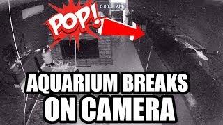 MY AQUARIUM EXPLODED!!