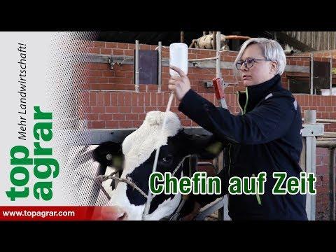 Betriebshelferin auf einem Milchhof: Wir begleiten Mareen Konjer einen Tag lang