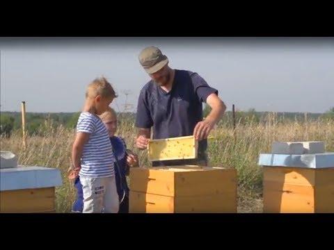Швейцарский пчеловод  в России