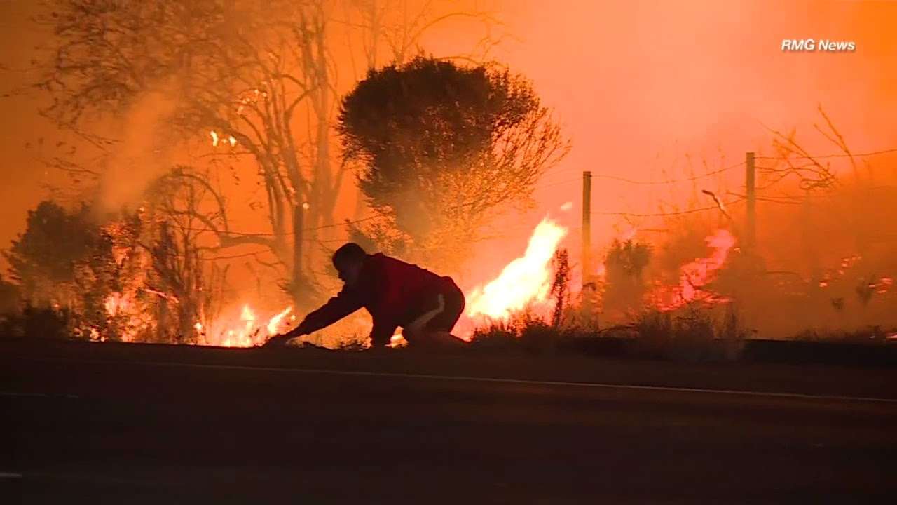 Man Risks Life To Save Wild Rabbit During Southern California Wildfire
